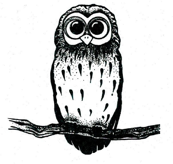 Image of owl - the school logo
